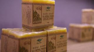 ベトナムのオーガニックコスメショップAryaTaraのシナモン石鹸